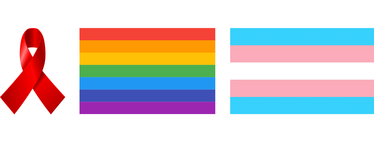 Pride and Trans Flag